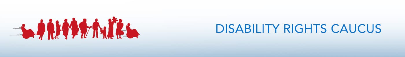 OPSEU Disability Rights banner