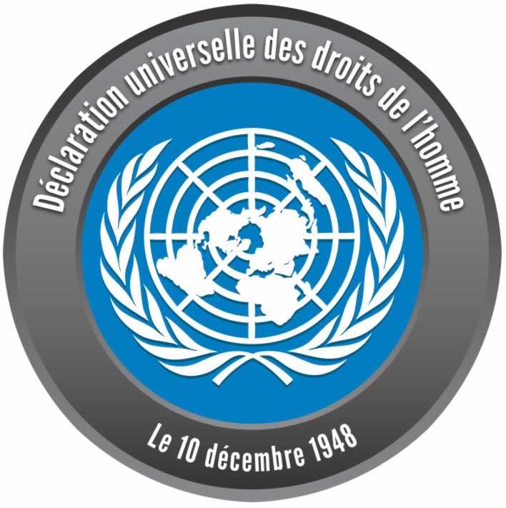 un_declaration_of_human_rights_pin_fr.jpg