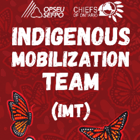 OPSEU Chiefs of Ontario Indigenous Mobilization Team (IMT)
