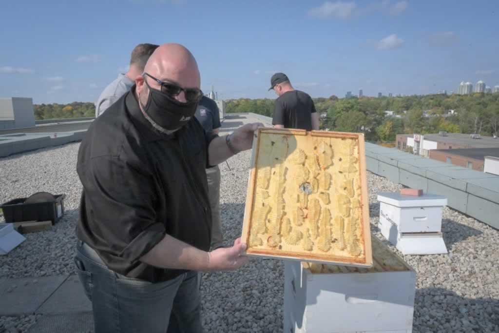 Eddy Almeida showing OPSEU bee hive